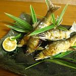 石庭 - 料理写真:球磨川の清流で育った天然鮎の塩焼き。