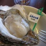 oisuta-ba-jakkupotto - 能登の岩牡蠣 プリプリ