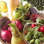 ハーブテラス - 季節のお野菜&自家製フレッシュハーブ