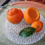 別邸 音信 - 料理写真:到着のお菓子の他に、お部屋に届けられた夏みかんのゼリー。京都・老松のものとよく似ています。