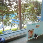 サトウヤ - 店内から見る景色