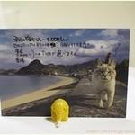 うどん - 2013年秋のめにゅー