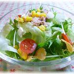 Pino - クリームチーズと新鮮野菜の大盛りサラダ