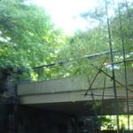 麓屋 - [内観] カウンター席からみる竹林 ②