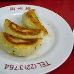 21173028 - 岡崎麺(ギョウザ3ヶ・250円)