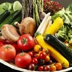 北○ - 春から秋は、札幌近郊の農家さんから、新鮮な今朝採り野菜を、自分たちで直接運んでいます。