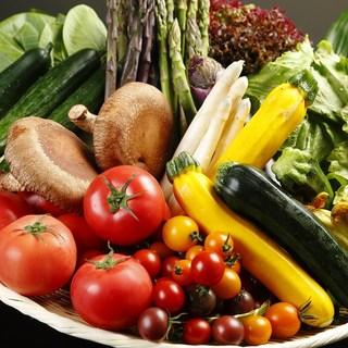 春から秋は、今朝採り野菜をご用意!