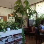 レストラン ケルン - 店内