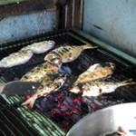 日下鮮魚 - いやもうほんと美味しいです