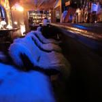 NEO SHOT BAR 深海の洞窟 - 落ち着いた雰囲気とカウンター席