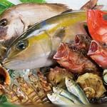 瀬戸内海鮮料理 白壁 - その他写真:瀬戸内の鮮魚!!!