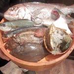 21361301 - 本日おすすめの鮮魚を店員さんが紹介してくれます