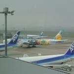 21373390 - ANAの飛行機が見れます