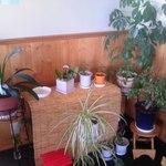 蕎麦の茶屋 丸山 - 店内 ①