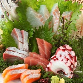 築地直送の鮮魚の刺身も全て500円で味わえる!