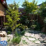 hanaはな家 - 座った席から見えるお庭・・・癒やされます。