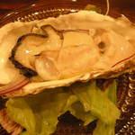 コッチャ - 北海道産生牡蠣