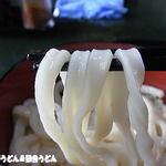 室蘭製麺所 - うどん さらにアップ