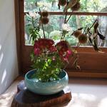 宝泉院 - 廊下のあちらこちらに、活け花や飾りがあります、またここにも