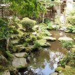 宝泉院 - お抹茶をいただいた部屋から見た庭
