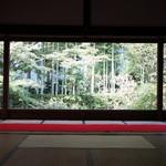 宝泉院 - 右面の額縁庭園、こちらは竹です