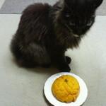 花ロードえにわ ベーカリー工房 カリンバ - かぼちゃメロンパン 150円 2013/09