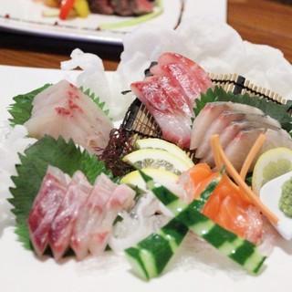 """夢海んといったら""""魚""""!"""