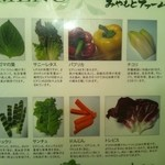 21473349 - 包み野菜盛合せ