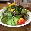 プリムローズ - 料理写真:ランチ☆サラダ