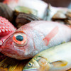 和楽ダイニング びりけん - 料理写真:毎日仕入れる魚は鮮度抜群!!