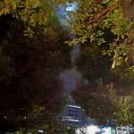 シンガポール シーフードリパブリック - テラスに十六夜の月〜〜♬