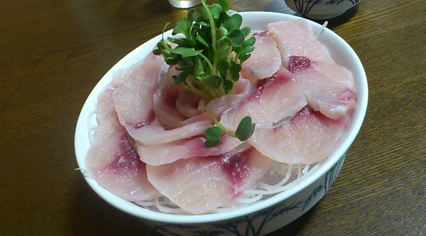 高井田養魚場
