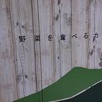 キャンプエクスプレス - 野菜を食べるカレー