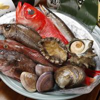 魚寅食堂 - 漁港から新鮮な魚が届きました。