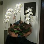 21761377 - お花が飾られている時もあります。