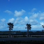 ココス - 窓からの眺め