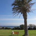 グリルなのはな - 芝生の向こうに太平洋