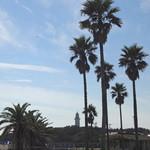 グリルなのはな - 右側に野島崎灯台