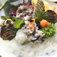 魚信旅館 - オコゼ姿造り
