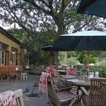 ドリプレ・ローズガーデン カフェ - 落ち着いた佇まい