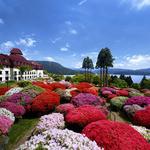 つつじの茶屋 - 美しい絵画のような風景の山のホテル