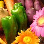 クローバー - 毎日仕入れる新鮮国産野菜 お酒にピッタリの全25種の料理。季節によって変わる、素材を活かした創作料理がラインナップ!