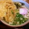 讃岐屋 - 料理写真:ワタシは、かき揚げゴボウ天