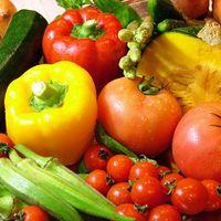 オルトキッチン - 旬の野菜は、それだけで彩りも鮮やか☆