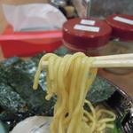 新とんこつ大学 - 麺