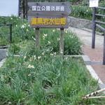 和匠よし乃 - 灘黒岩水仙郷