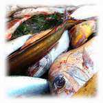 イルチッチォーネ - やまはるは築地で1番大きいお魚屋さん。
