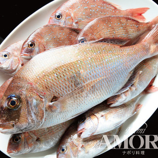 ★★和歌山県湯浅産の新鮮な鯛と鯖と鰹を仕入れました。