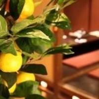 全席個室居酒屋 柚庵~yuan~ - ゆずの香り漂う落ち着いた店内。
