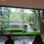 カフェ すいれん - 店内から中庭が見渡せます